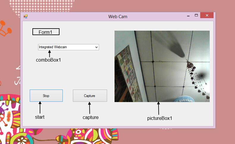Open source directshow player webcam